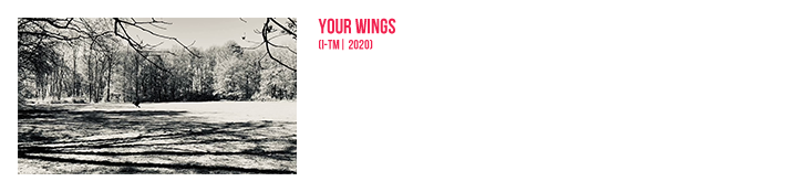 Your Wings | Official Video